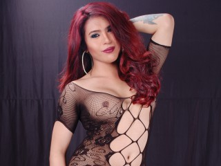 Wildkaterinaxx cam profile